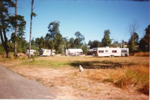 Scan0024_0024