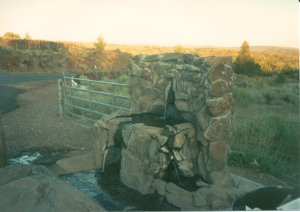 Artesian Well Near Spanish Springs, California